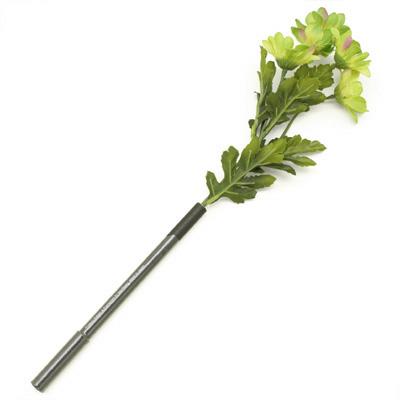 bonboog[ボンブーグ]ボタニカルペン/デイジー Botanical Pen