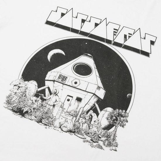 SASSAFRAS[ササフラス]Space Cottage T 1/2 SF-201646